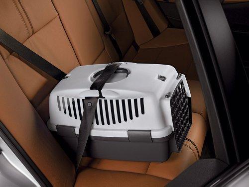 Das Bild zeigt die Gulliver 3 Transportbox. Danke Autogurt Vorrichtung kann sie kann auch im Auto fixiert werden.