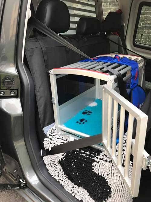 Transportbox-auf-dem-Ruecksitz-im-Auto