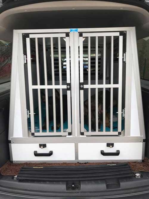 Transportbox-im-Kofferraum-befestigen