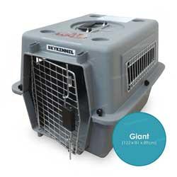 Das Bild zeigt den Skykennel No. 7 der Firma Petmate. Diese Hundeflugbox eignet sich besonders gut fürs Flugzeug, da sie aus hartem Kunststoff ist und den IATA Bestimmungen entspricht.